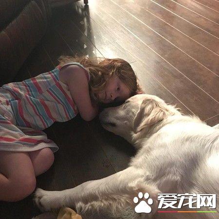 缺臂女孩和缺前脚狗狗 成为幸运鳍伙伴
